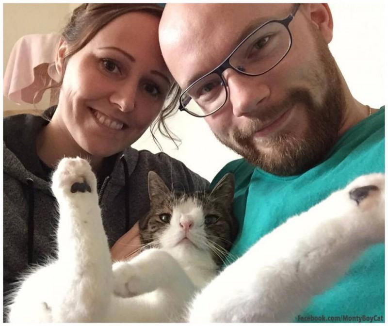 Кот с синдромом Дауна очаровал весь мир