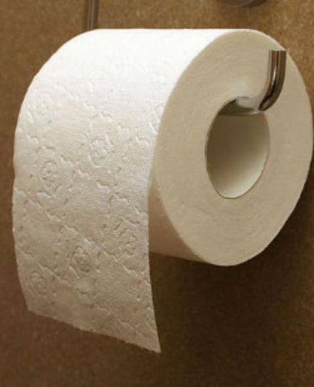 Никогда не клади туалетную бумагу на сиденье унитаза. Это негигиенично!