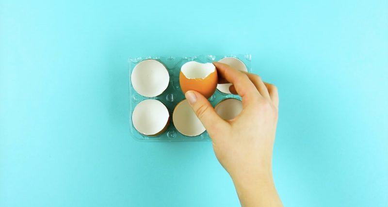 яичная скорлупа в руках