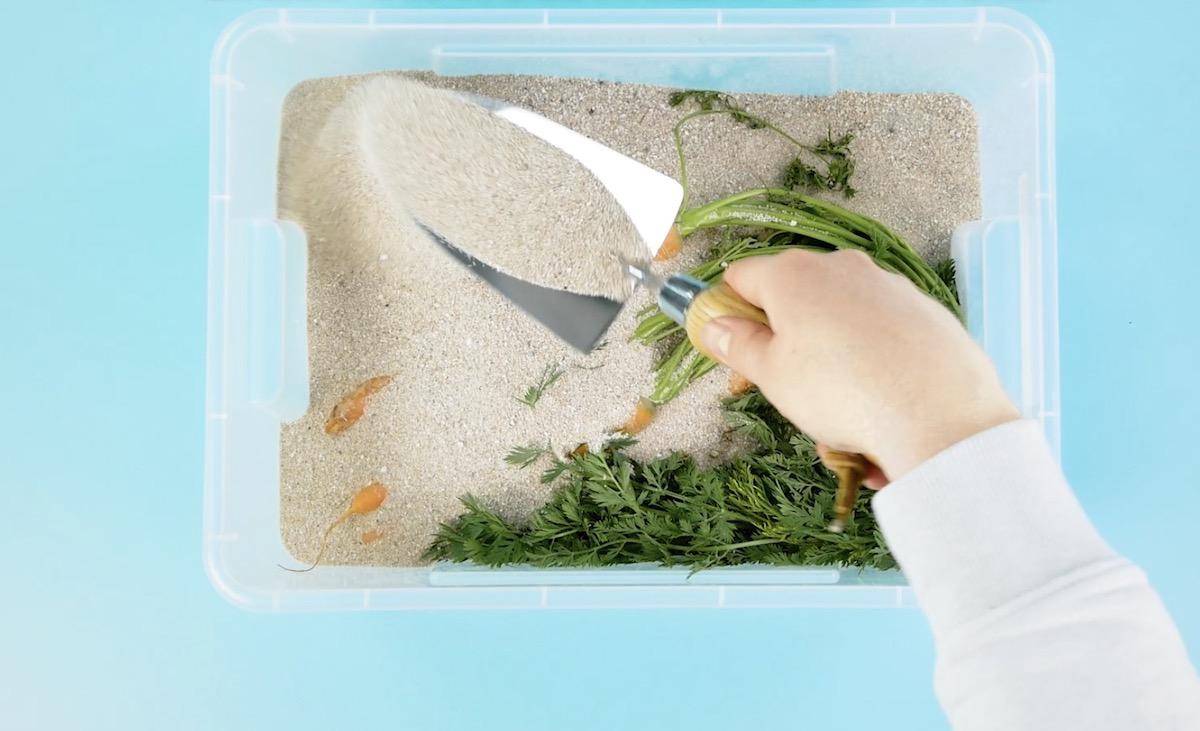 ящик с песком