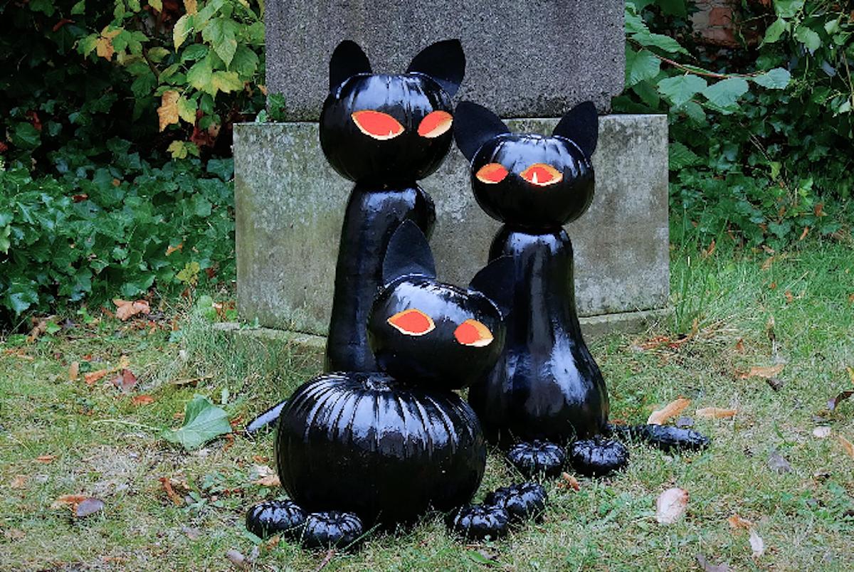 кошки из тыквы